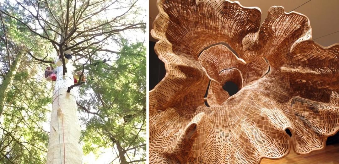 moule-arbre-geant-04-1080x522
