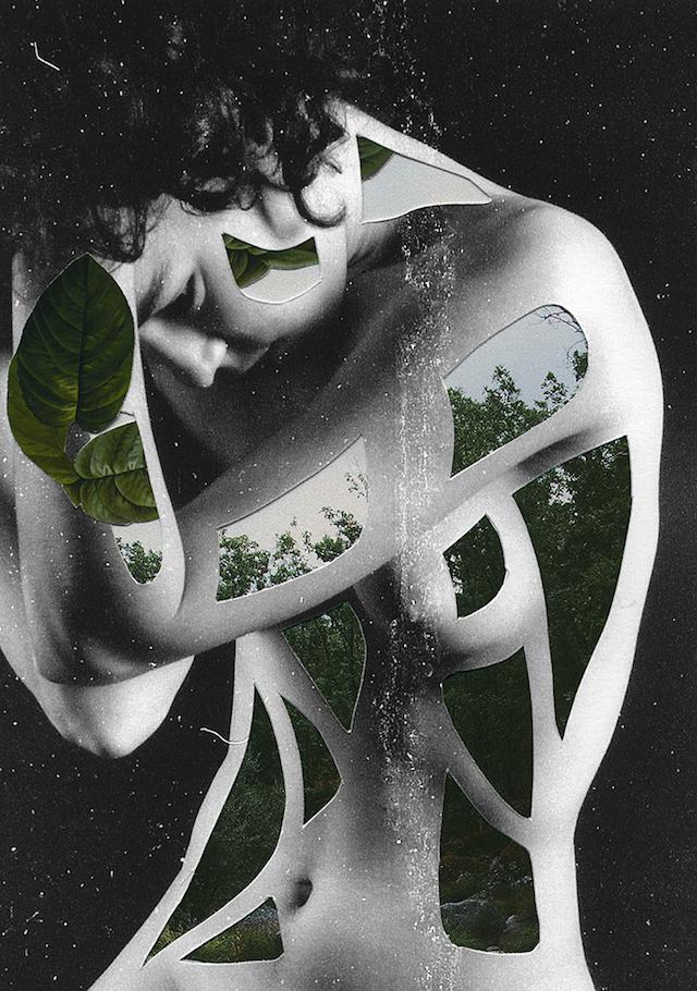 Rocio-Montoya_Collage_03