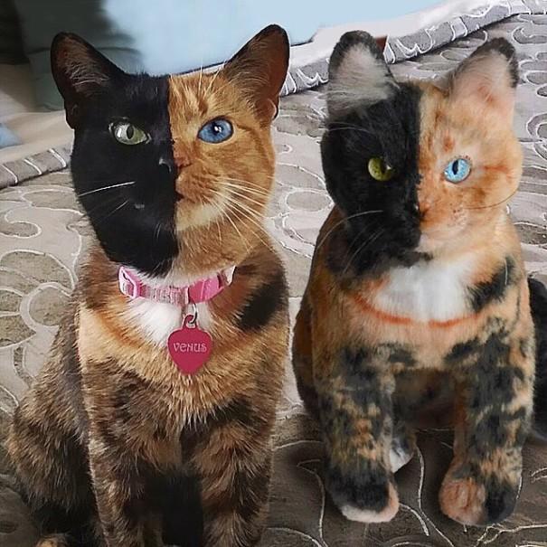 toys-cuddle-clones1