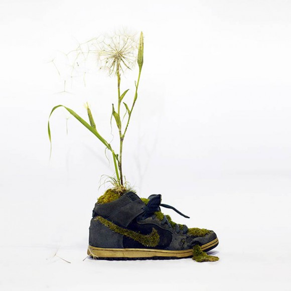 monsieur-plant5