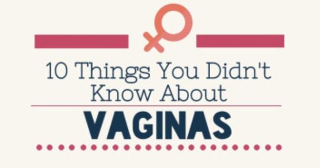 vagina1