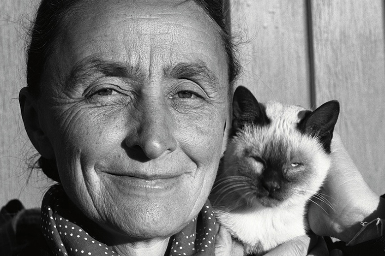 intimate-portraits-of-iconic-artists-and-their-cats-in-new-book-5