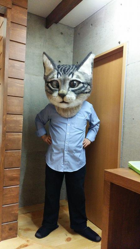 testa-di-gatto1