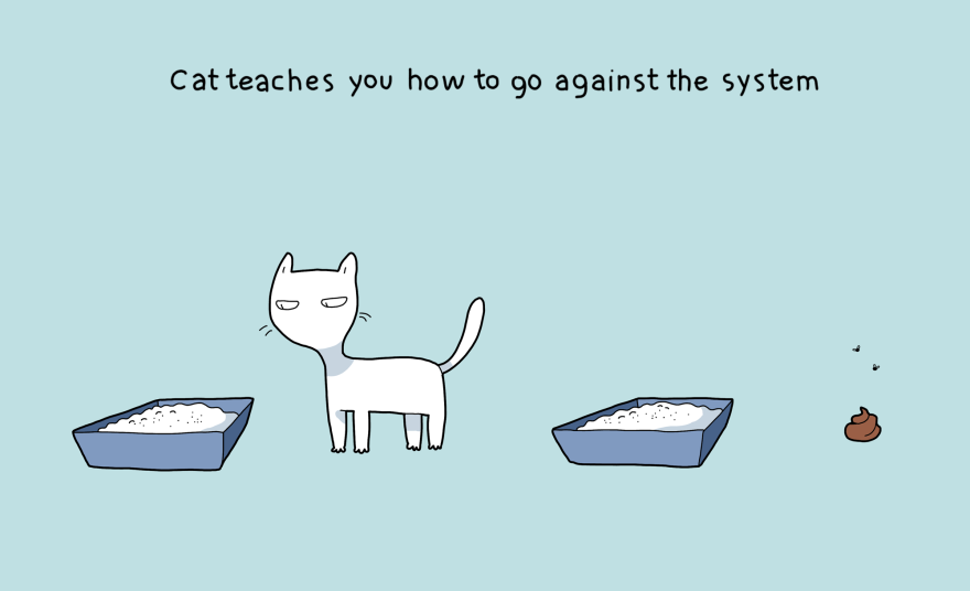 I gatti vi insegneranno come ribellarvi