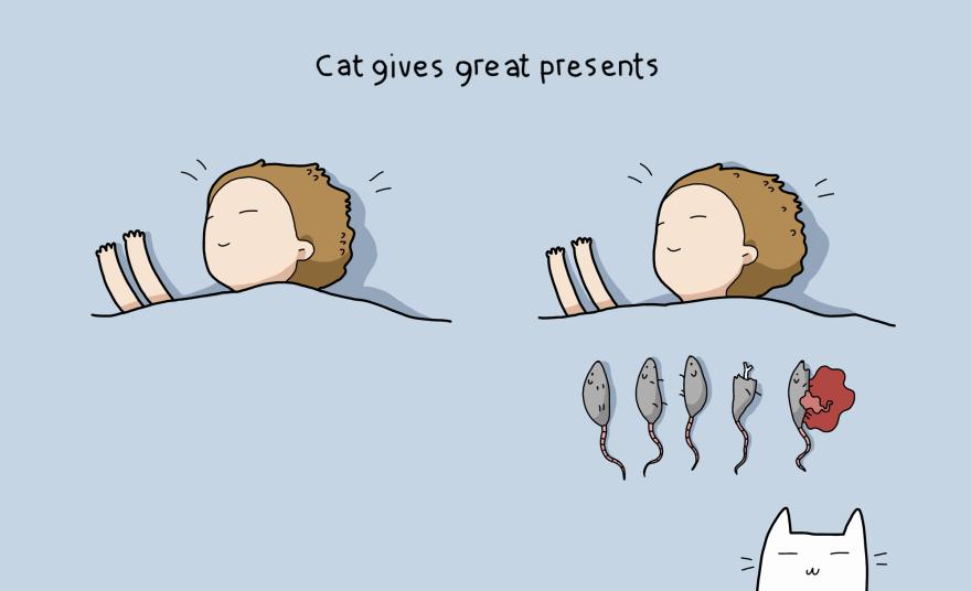 I gatti fanno dei bei regali