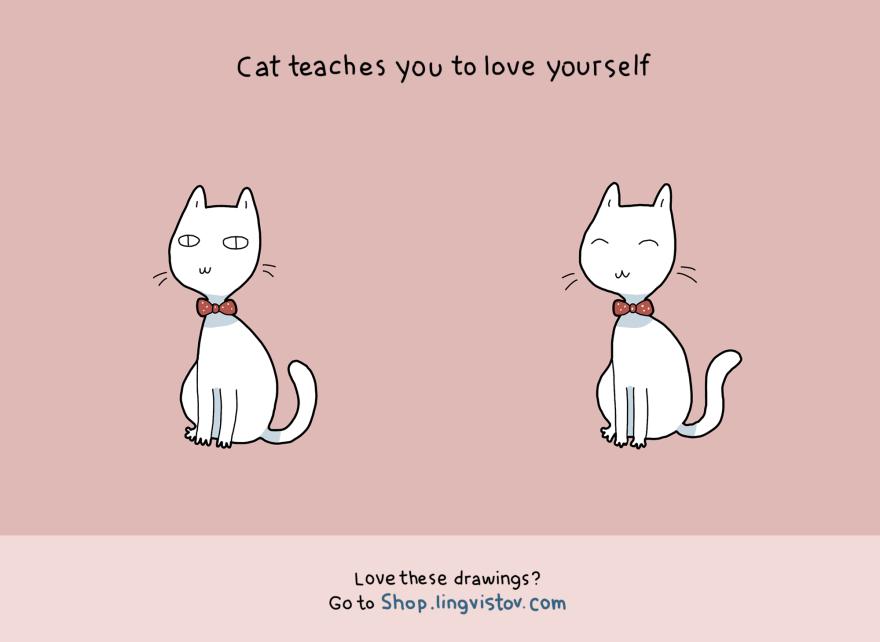 I gatti vi insegnano ad aumentare la vostra autostima