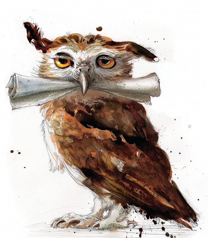 Ammettiamolo, chiunque di noi al proprio 11esimo compleanno ha desiderato ardentemente di trovarsi un gufo con la lettera di ammissione a Hogwarts.