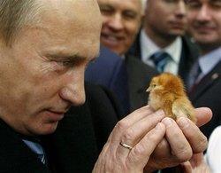 Volevate sapere come si fanno i Chicken McNuggets, eh?