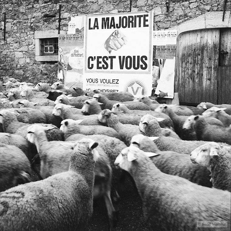 Rene-Maltete-photographie-17