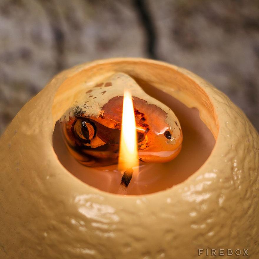 candele raptor14