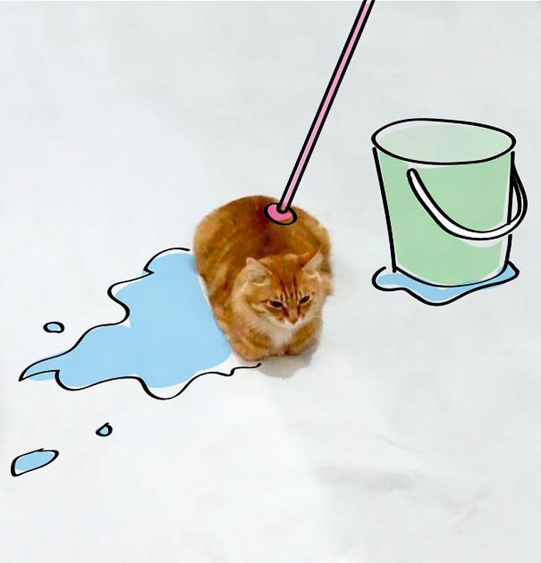 Doodle-Cat-11