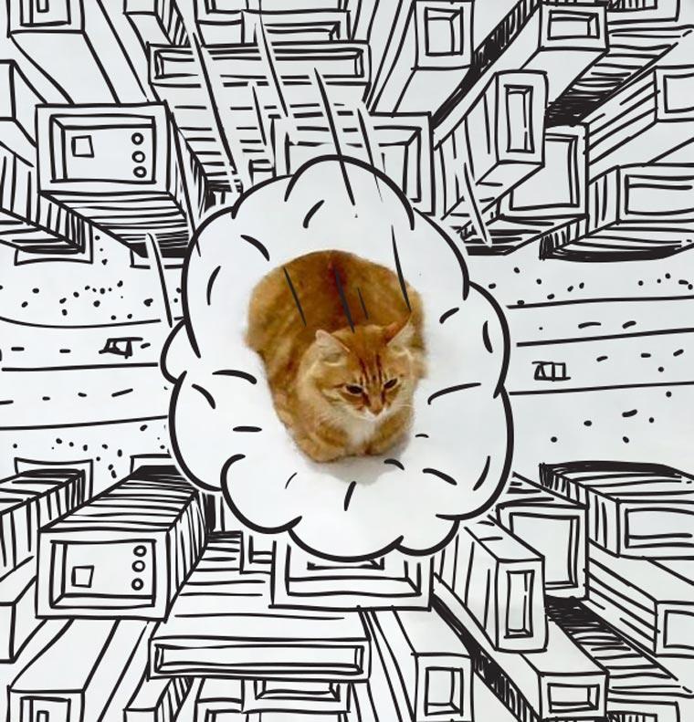 Doodle-Cat-13