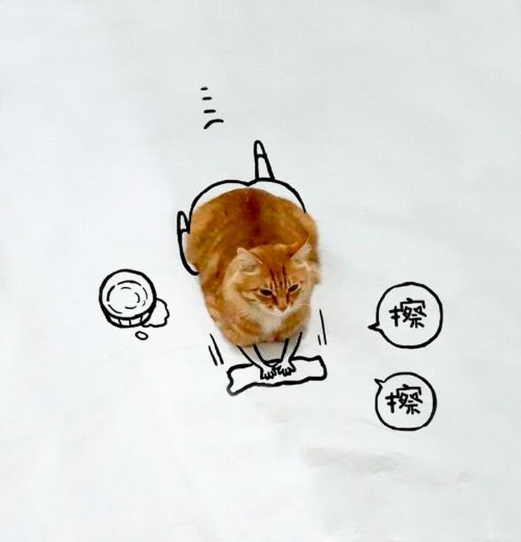 Doodle-Cat-16