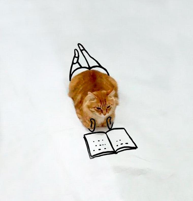 Doodle-Cat-3