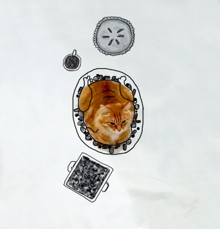 Doodle-Cat-7