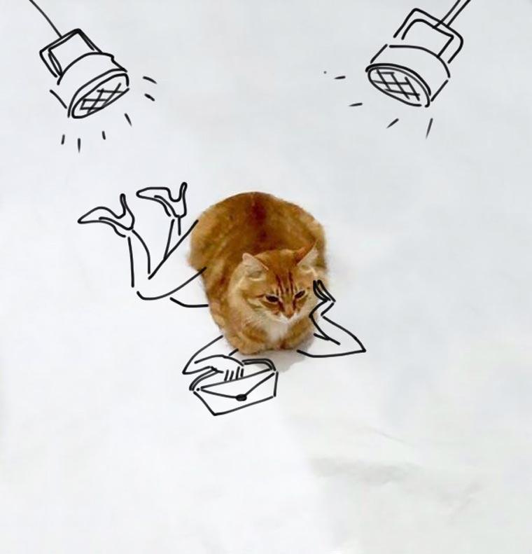 Doodle-Cat-8