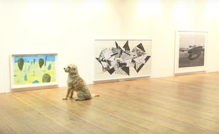 Dominic-Wilcox-exposition-pour-chiens-1