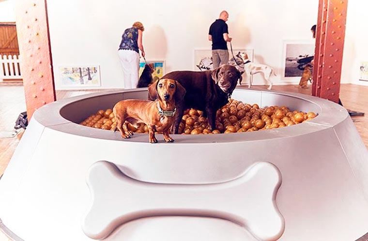 Dominic-Wilcox-exposition-pour-chiens-6