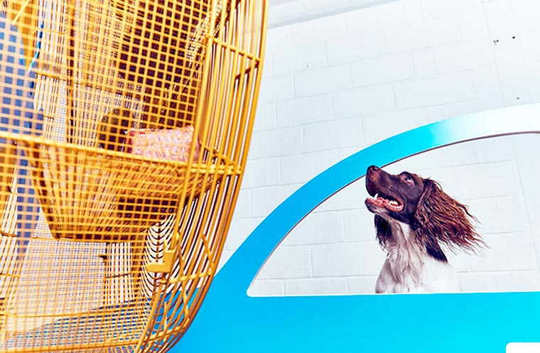 Dominic-Wilcox-exposition-pour-chiens-9