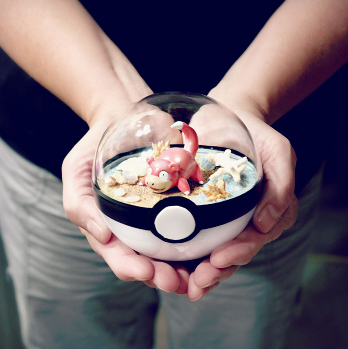 poke-ball-terrarium-pokemon-the-vintage-realm-4-57f3a82a2c228__700