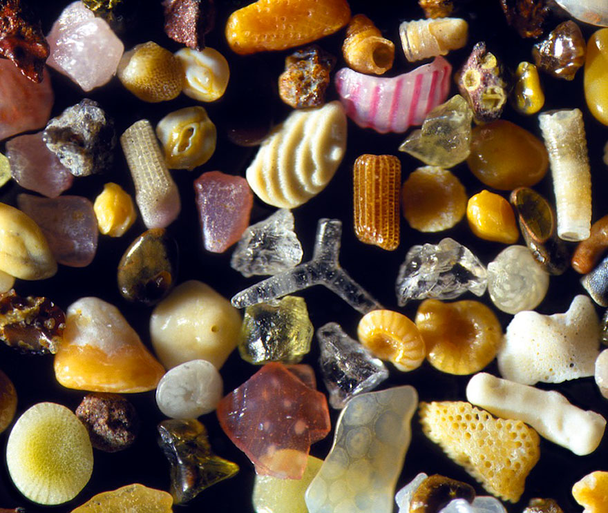 sand-grains-under-microscope-gary-greenberg-4