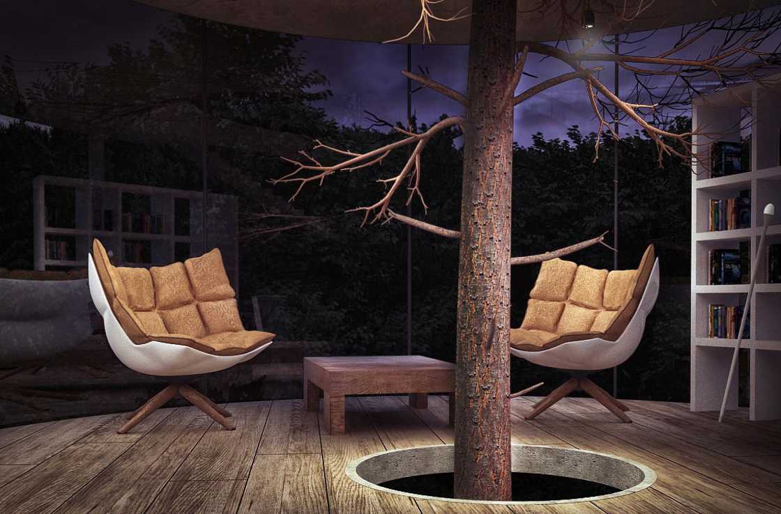modern-tree-house-3