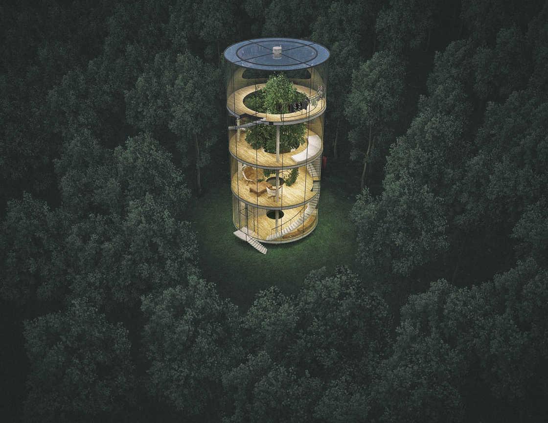 modern-tree-house-6