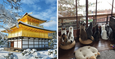 heavy-snowfall-kyoto-japan-2017-fb6