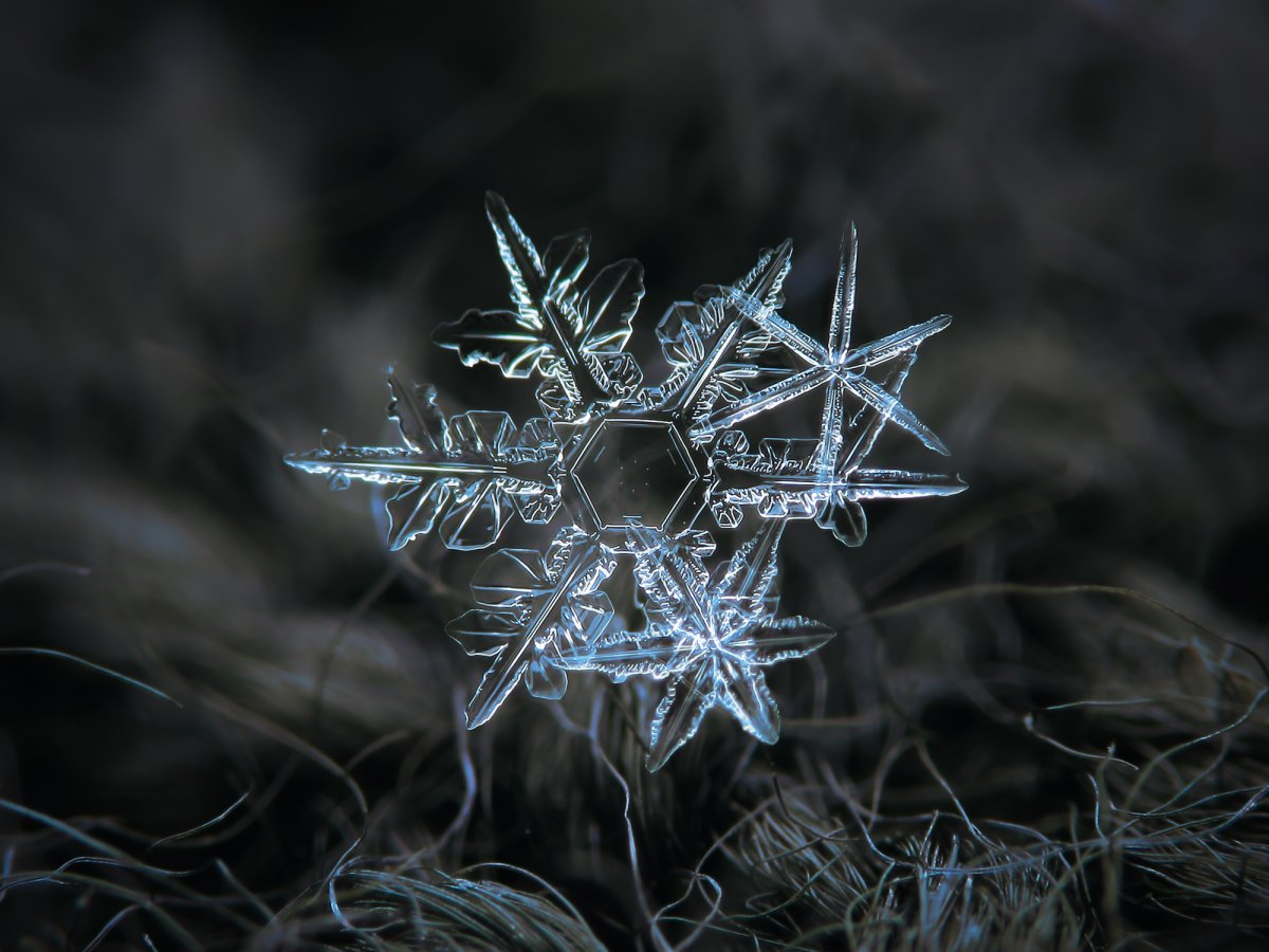 kljatov-was-inspired-to-try-his-own-snowflake-photography-after-seeing-a-website-called-snow-crystals-created-by-a-caltech-physics-professor-named-kenneth-libbrecht