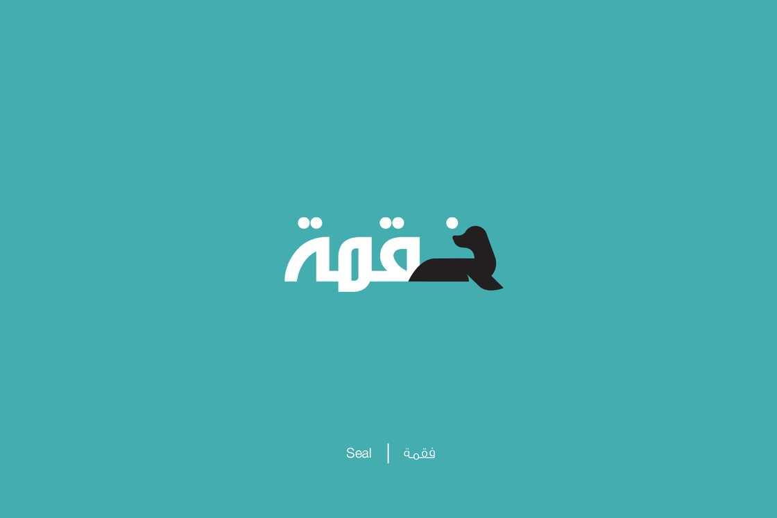 expliquer-les-lettres-arabes-1