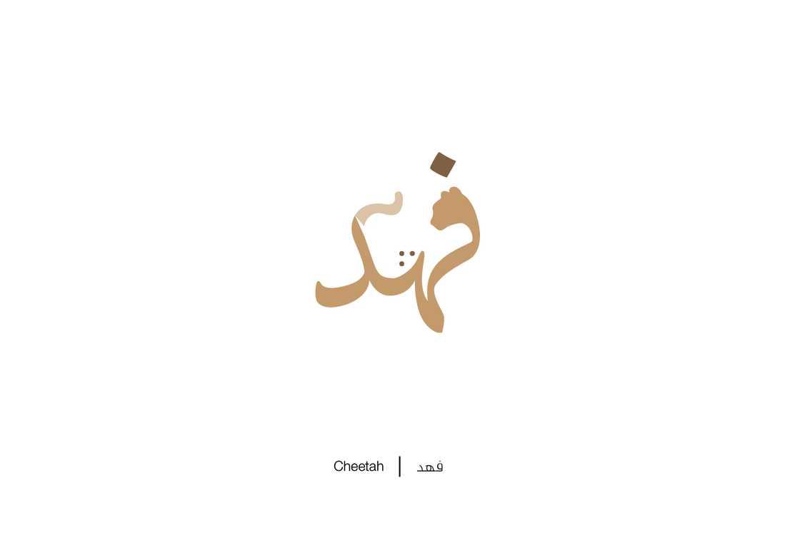 expliquer-les-lettres-arabes-12