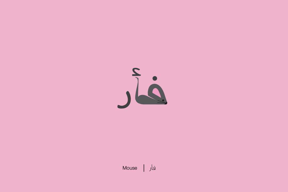 expliquer-les-lettres-arabes-14