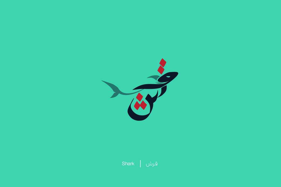 expliquer-les-lettres-arabes-8