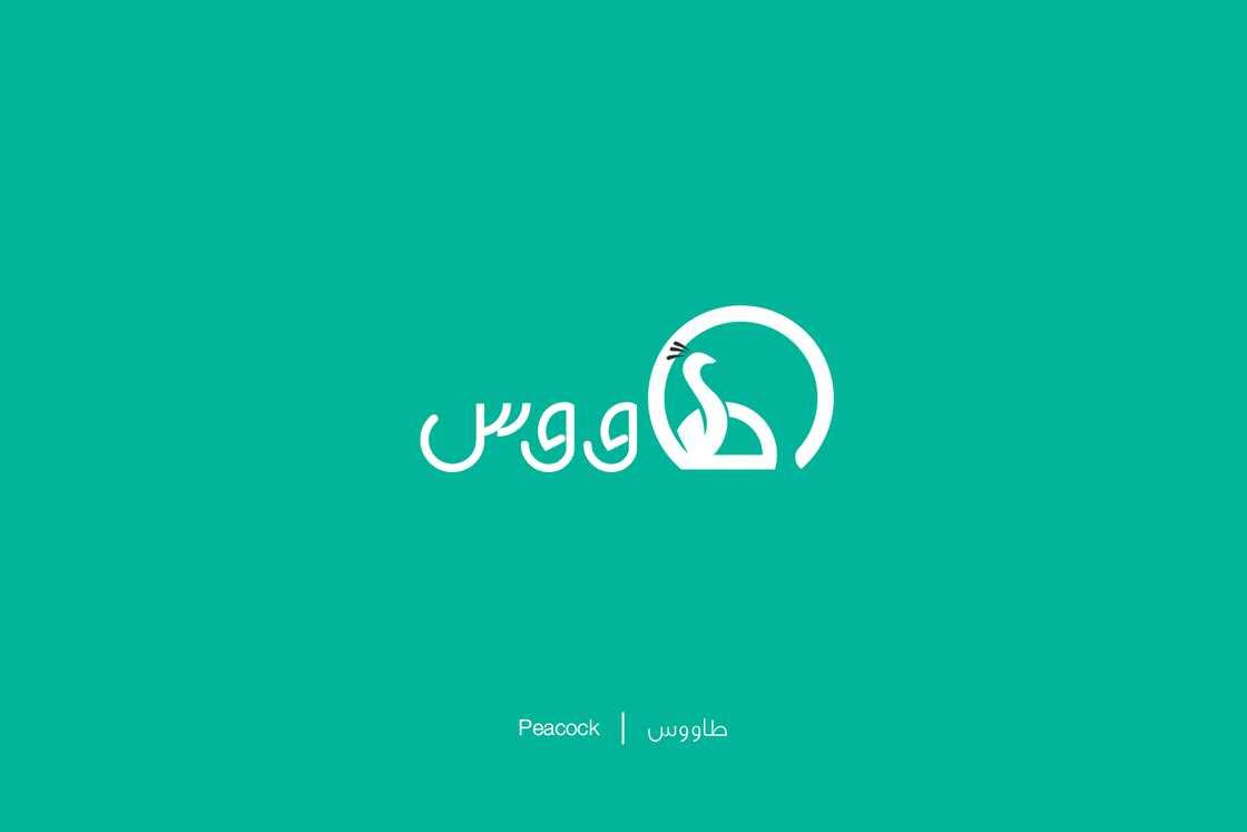 expliquer-les-lettres-arabes-9