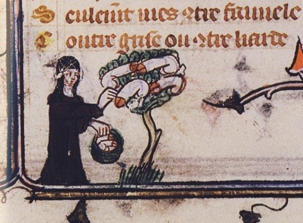 20 opere d'arte medievali che vi faranno vedere la storia con un occhio diverso | Pagina 2 di 16