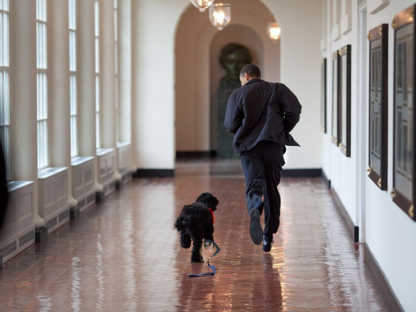 """President Barack Obama runs down the East Colonnade with family dog """"Bo."""" 3/15/09 Official White House Photo by Pete Souza"""