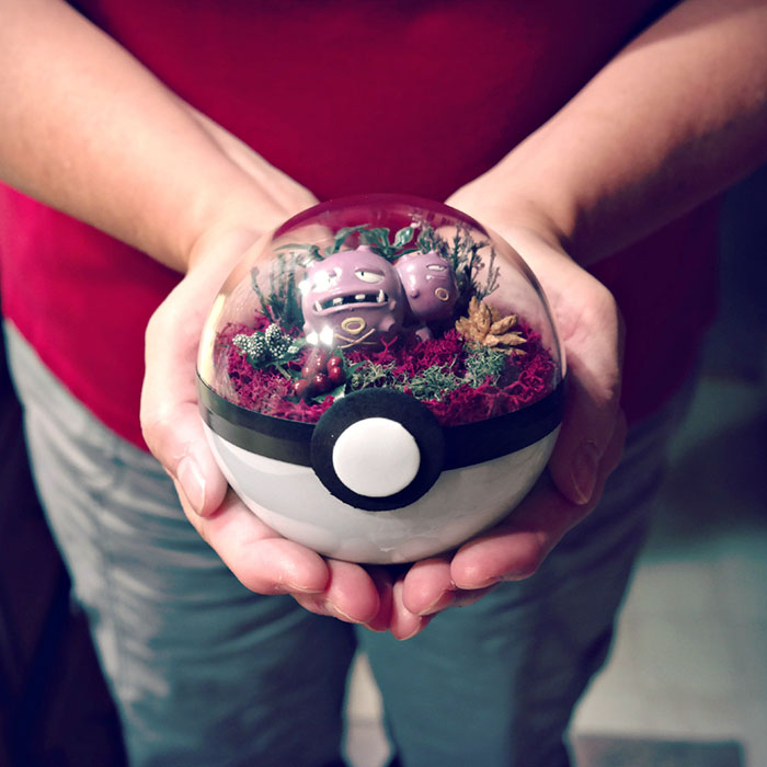 poke-ball-terrarium-pokemon-the-vintage-realm-12-57f3a83e350a5__700