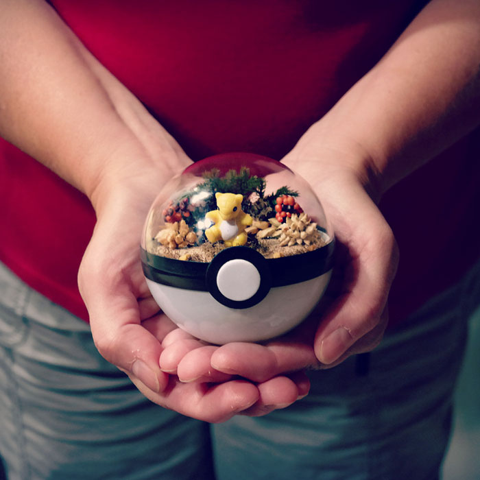 poke-ball-terrarium-pokemon-the-vintage-realm-57f3ab87b5f26__700