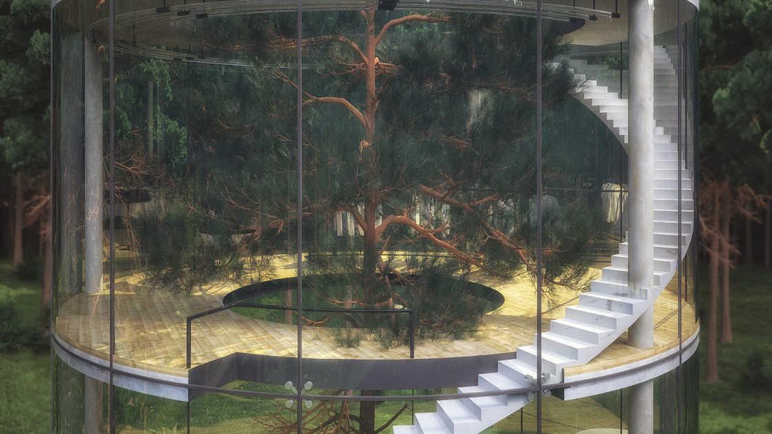 modern-tree-house-5