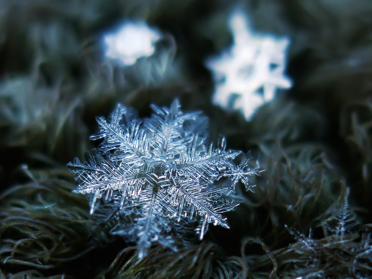 kljatov-said-he-usually-takes-8-to-10-pictures-of-each-snowflake