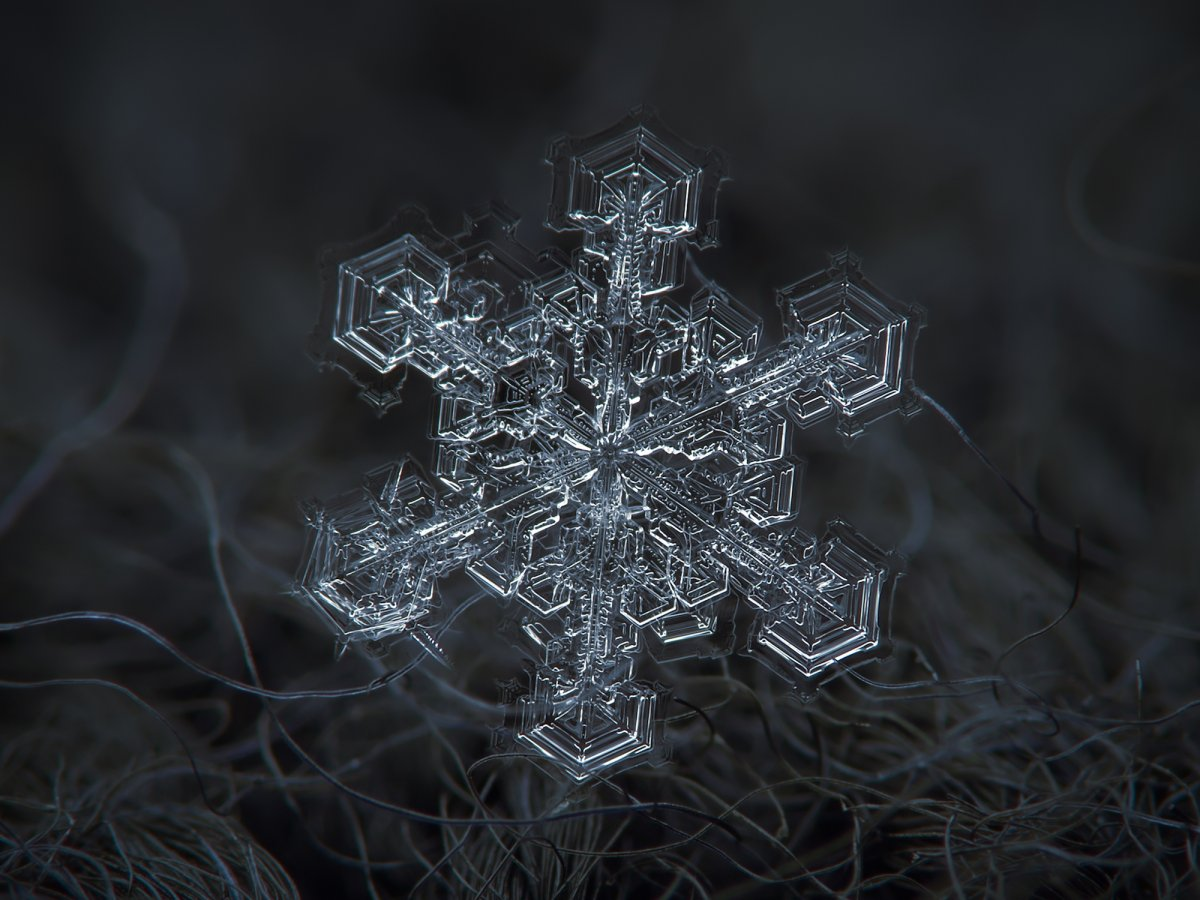 now-iknow-that-this-is-completely-wrong-he-wrote-every-photographer-with-simple-point-and-shoot-camera-can-take-very-good-snowflake-pictures