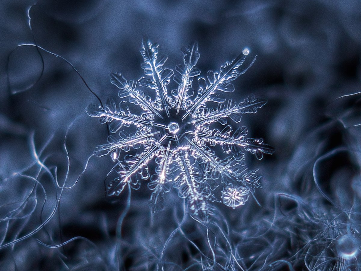 we-love-the-small-imperfections-he-captures-like-the-tiny-snowflake-connected-to-this-larger-one-seen-below