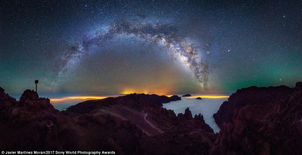 La natura come non l'avete mai vista: fotografie che vi lasceranno a bocca aperta