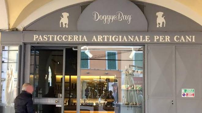 A Brescia apre una pasticceria artigianale solo per i cani