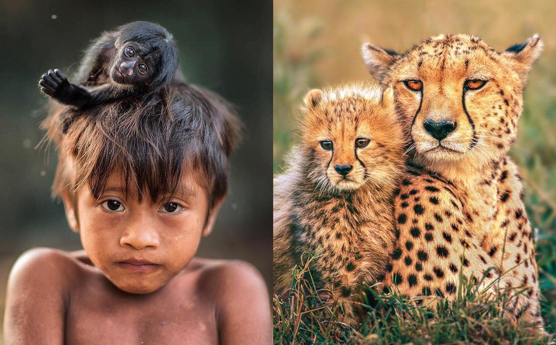 National Geographic svela le più belle foto Instagram del 2017